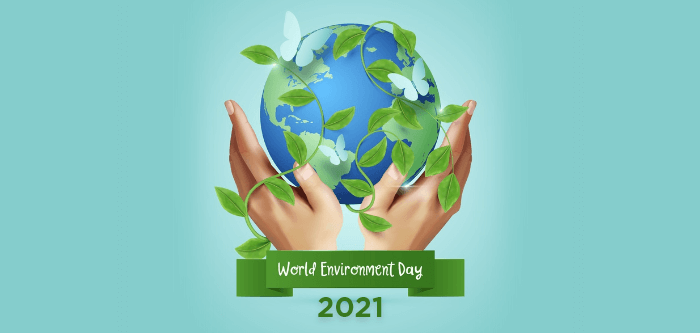 World Environment Day and Eco Friendly Habits for Healthy Living