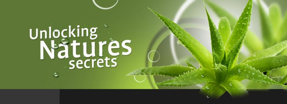 Health Benefits Of Aloe Vera For Skin, Hair & Health Related Problems