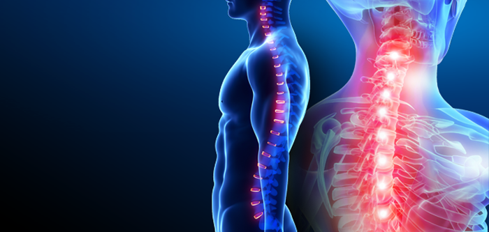 Why Is It Essential To Maintain The Right Posture During Workouts?