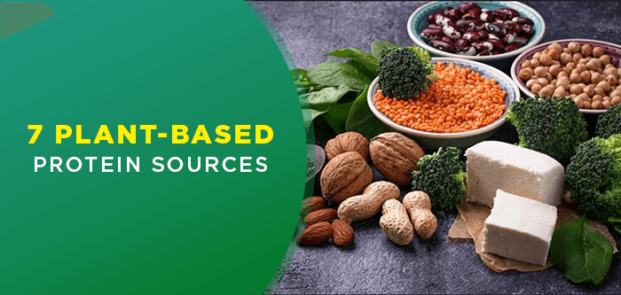 High Protein Foods | Sources of Protein for Vegetarians