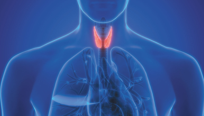 12 Best Foods To Include In Your Diet To Maintain Thyroid Levels