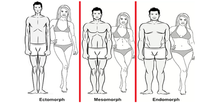 Train According To Your Body Type – Receive The Best Results.