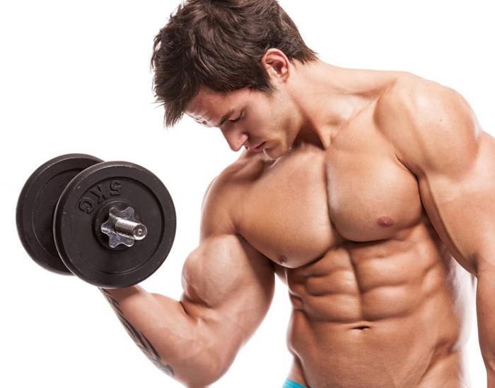 Increase muscle, decrease fat
