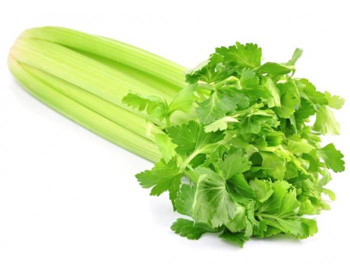 Celery Benefits - FITPASS