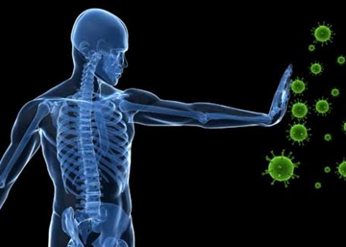 Improves immune system