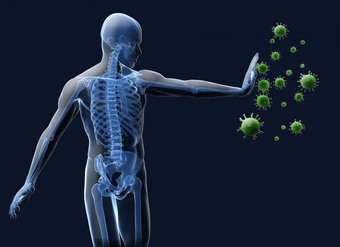 Aloe Vera - Promotes the immune system