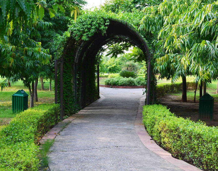 Tau Devi Lal Bio Diversity Park, Gurgaon