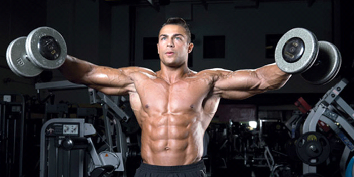 What is shoulder muscles called?