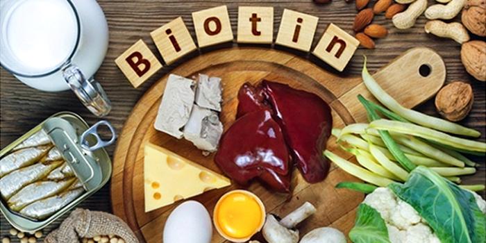 Is biotin Shampoo useful for hair?