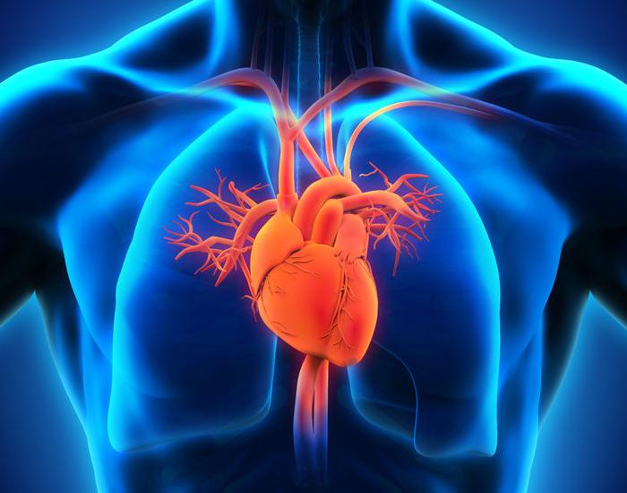 Aloe Vera - Improves your heart health
