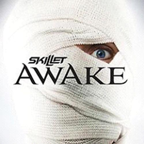 """""""Awake and Alive"""" Skillet"""