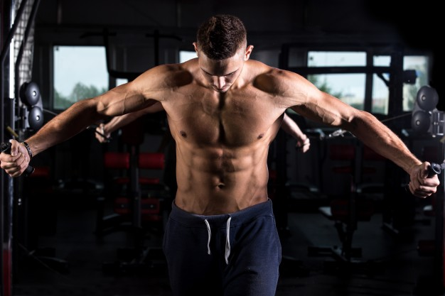 Chest and Arm Workout