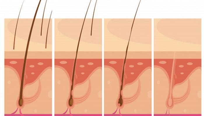 Hair Loss and Damaged Skin