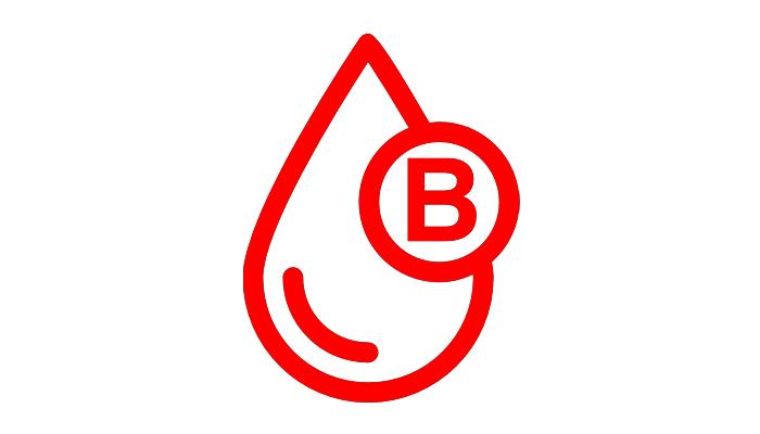 Type B (The Nomad)