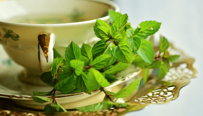 Which herb brings relief from cold flu and digestive problems?