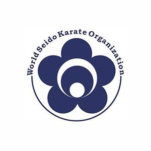 Seido Karate India