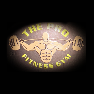 The Pro Fitness Gym