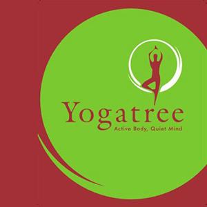 Yogatree Jp Nagar Phase 7