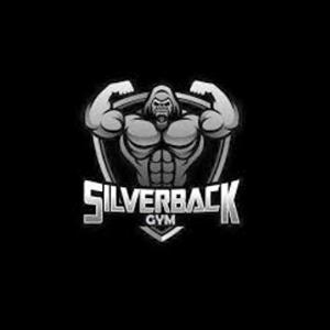 Silverback Gym GTB Nagar