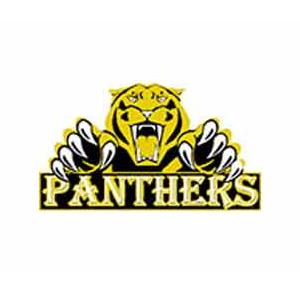 Panthers Dance Institute Mayur Vihar Phase -3