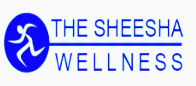 The Sheesha  Welleness Prahladnagar
