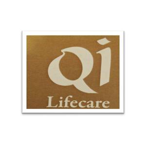 Qi Lifecare Pvt. Ltd Church Gate