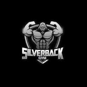 Silverback Gym - New Gupta Colony