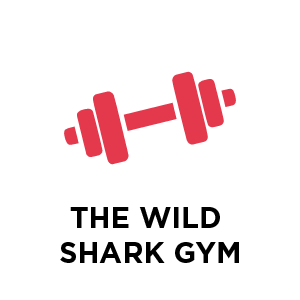 The Wild Shark Gym