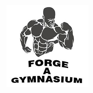 Forge A Gymnasium