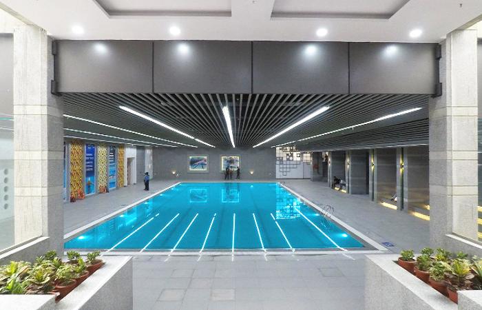Fitso Seals Swimming Academy Sapphire International School Sector 70 Noida