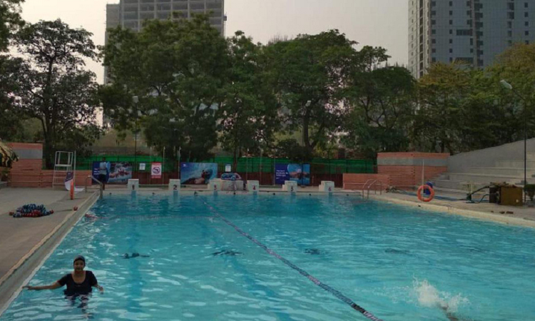 Fitso SEALs Swimming Academy Apeejay School Sector 16 Noida