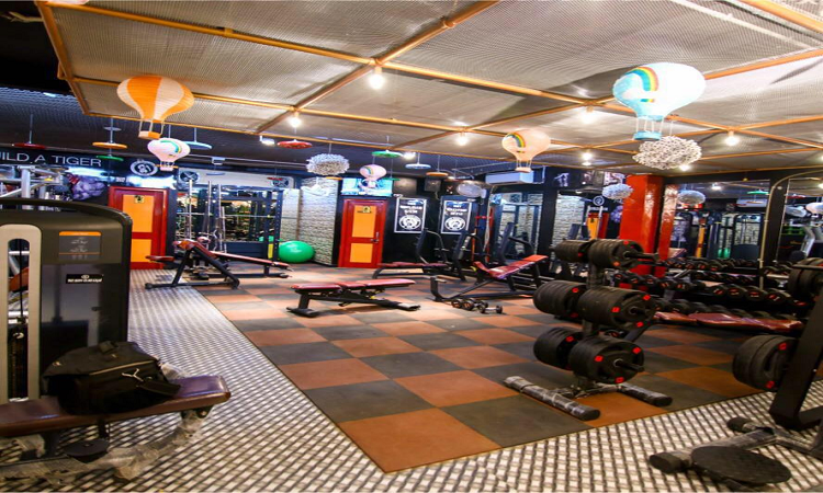 The Iron Club Gym Sector 7 Rohini