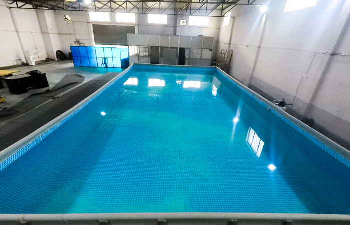 Fitso SEALs Swimming Academy Sector 3 Gurgaon