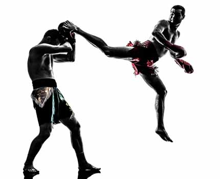 Sanshinkan MMA Vikaspuri