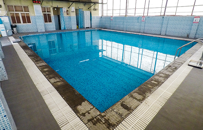 Fitso Seals Swimming Academy Tecnia International School Sector 8 Rohini