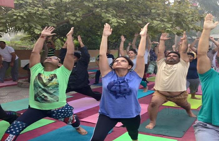 Yoga Plus Bangur