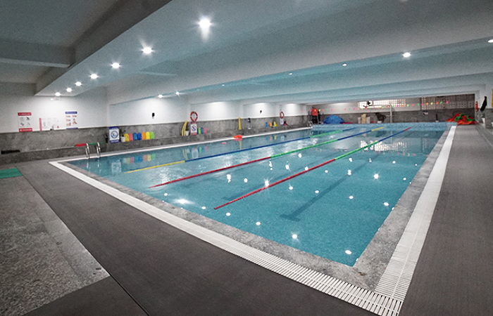 Fitso Seals Swimming Academy Lps Global School Sector 51 Noida
