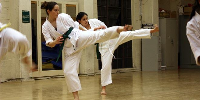 Seido Karate India Greater Kailash Part 2