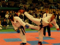 Sterling Taekwondo Association Sector 16 Faridabad